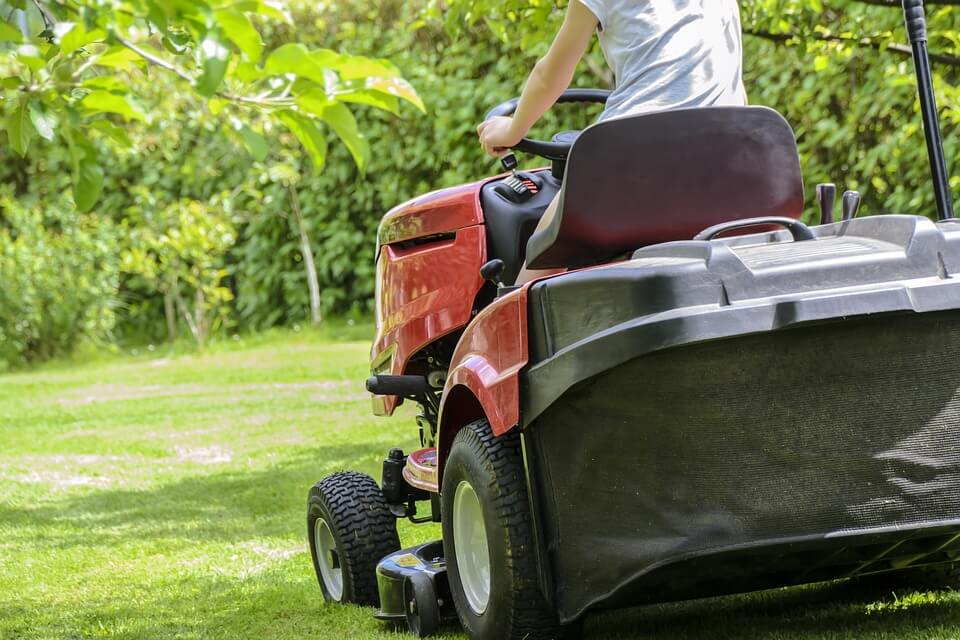 Things to Check When Hiring a Lawn Care Professional
